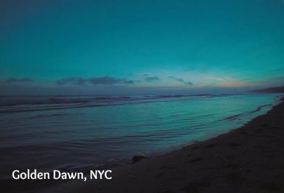 Golden Dawn, NYC