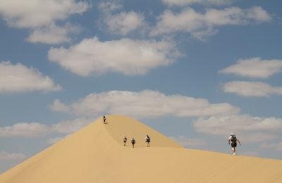 Desert Runners thumbnail
