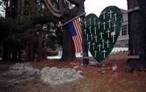 Surviving Sandy Hook thumbnail