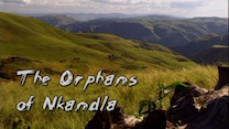 Orphans of Nkandla thumbnail