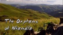 Orphans of Nkandla thumbnail